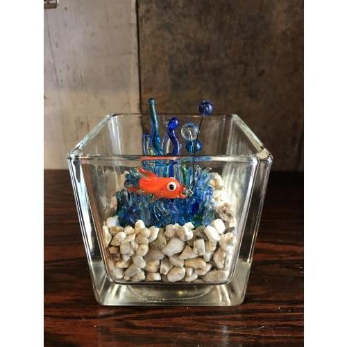 Klein aquarium van glas